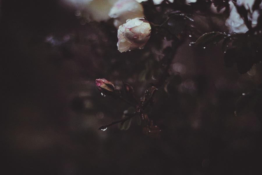20130620_ros_003