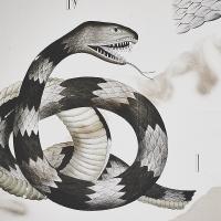 dybdahls zoologiske plancher — en granskning